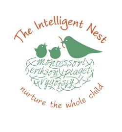The Intelligent Nest Logo