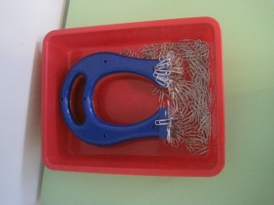 Horseshoe magnets with paper clips and other non-magnetic and magnetic metallic items